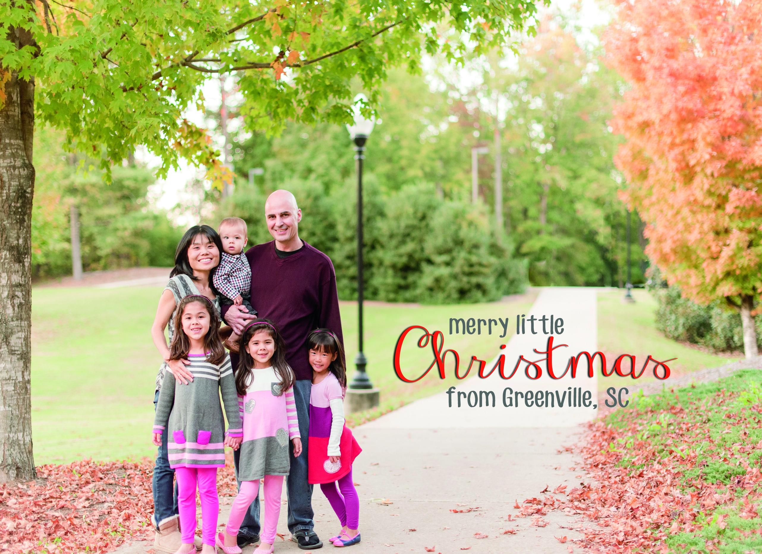 Annual Christmas Cards